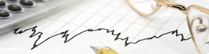 Jaypee Group | Investors Statutory presentation